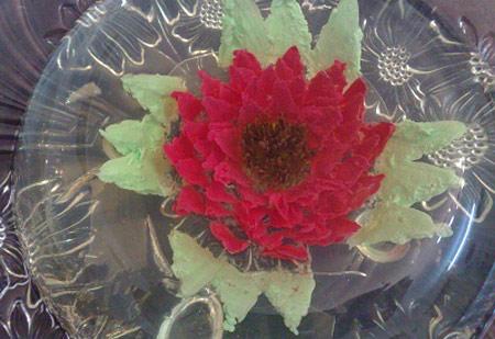 عکس ژله تزریقی گل میخک